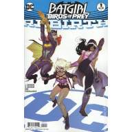 Batgirl and the Birds of Prey Rebirth (Cover B)